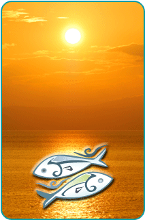 Golden sunset over the ocean with an illustration of the astrological sign Pisces in the foreground