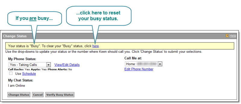 Screenshot of Busy Status