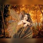Angel Reader