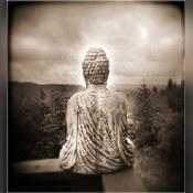 Spiritual Celin