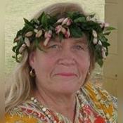 Aloha Dreamer