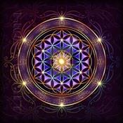 Terra Dharma