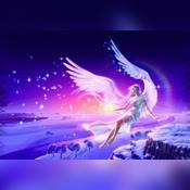 Ms Angel