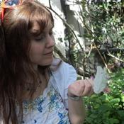 Melody Aurelia